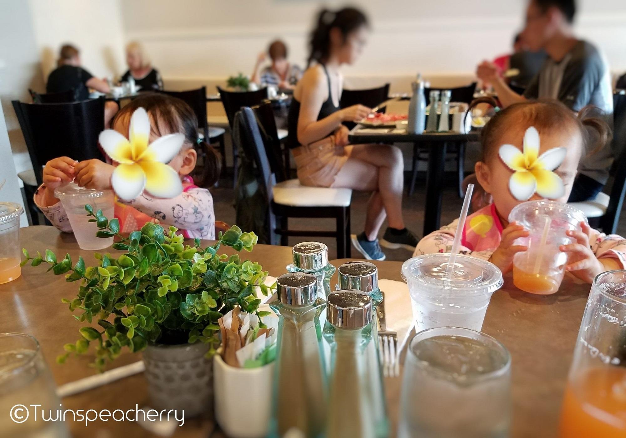 CoCo Marina Center(ココ・マリーナ・センター)のMoena Cafe(モエナカフェ)|幼児(双子2歳)とハワイ オアフ島 旅行