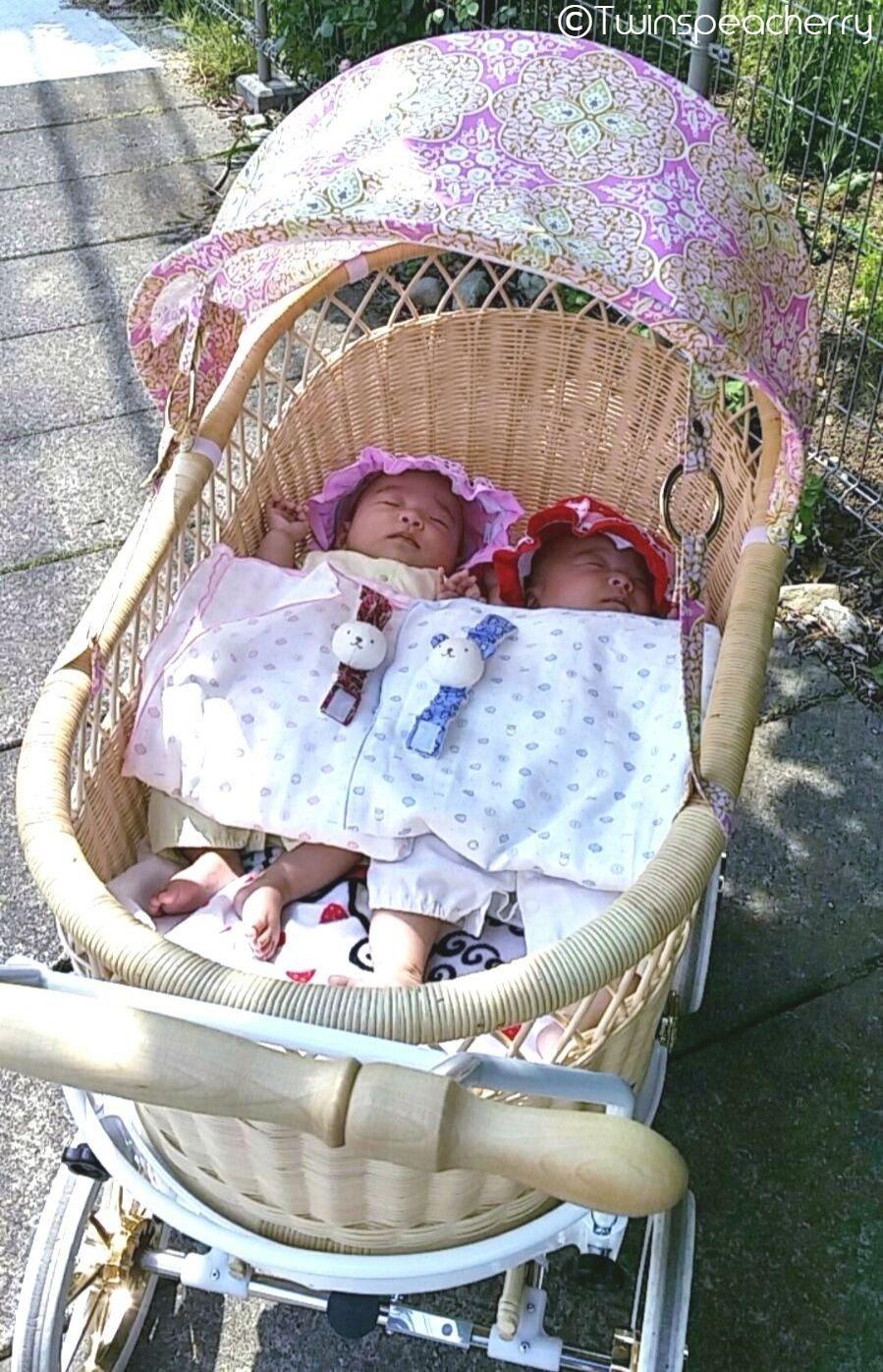 プスプス乳母車で双子を散歩!